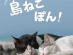 ☆島ねこぽん_表紙カバー_0701更新