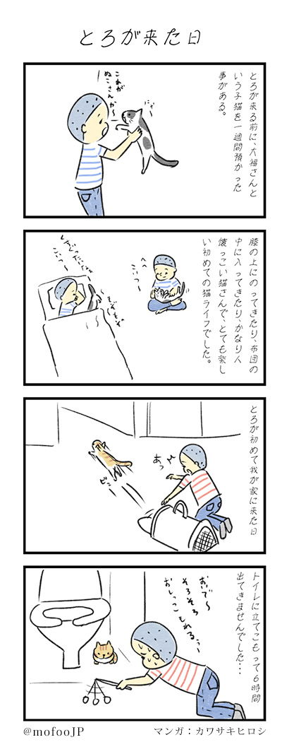 torokita