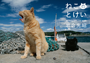 cat_tokei