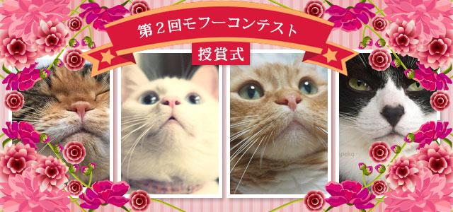 hapyou2_main-jpg