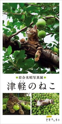 津軽のねこ展_DM_0301_ol-4校