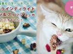 main_yumechan