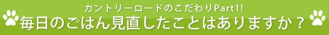 minaoshi