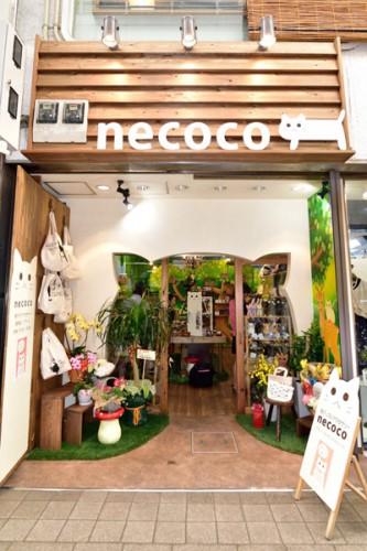 necoco2