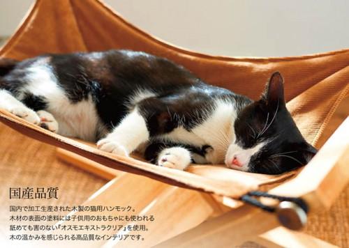 cat_hammock_03