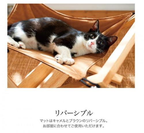 cat_hammock_10