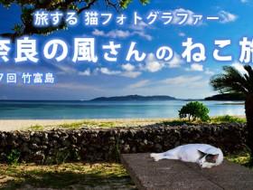 taketomijima_tit