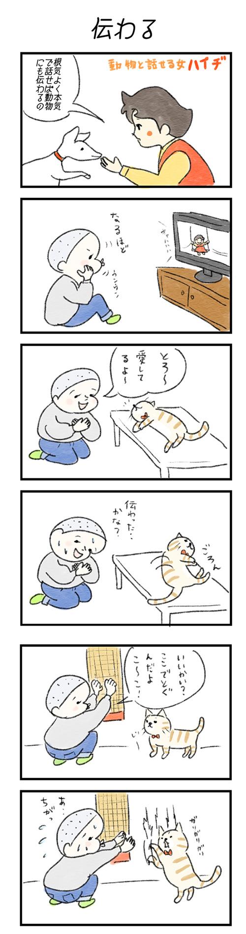 tsutawaru