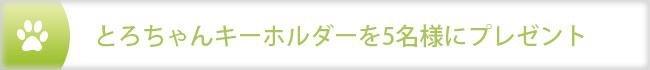 key_p