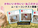 猫泥棒MP3
