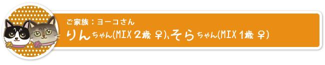 rin_name