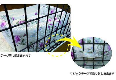 bed_so01