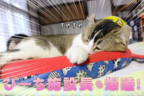 ashinomaki11