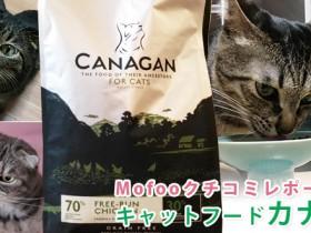 canagan_tit
