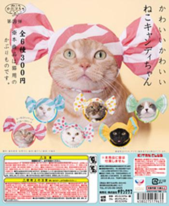 ねこキャンディ_DPMP_最終