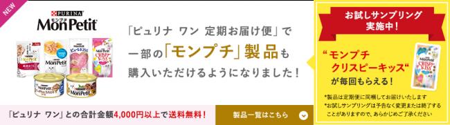 bnr_campaign