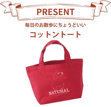 gift_a_bag